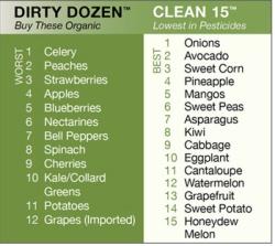 organic-foods2